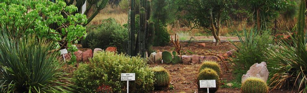 Departamento de biolog a uaa for Centro de eventos jardin botanico