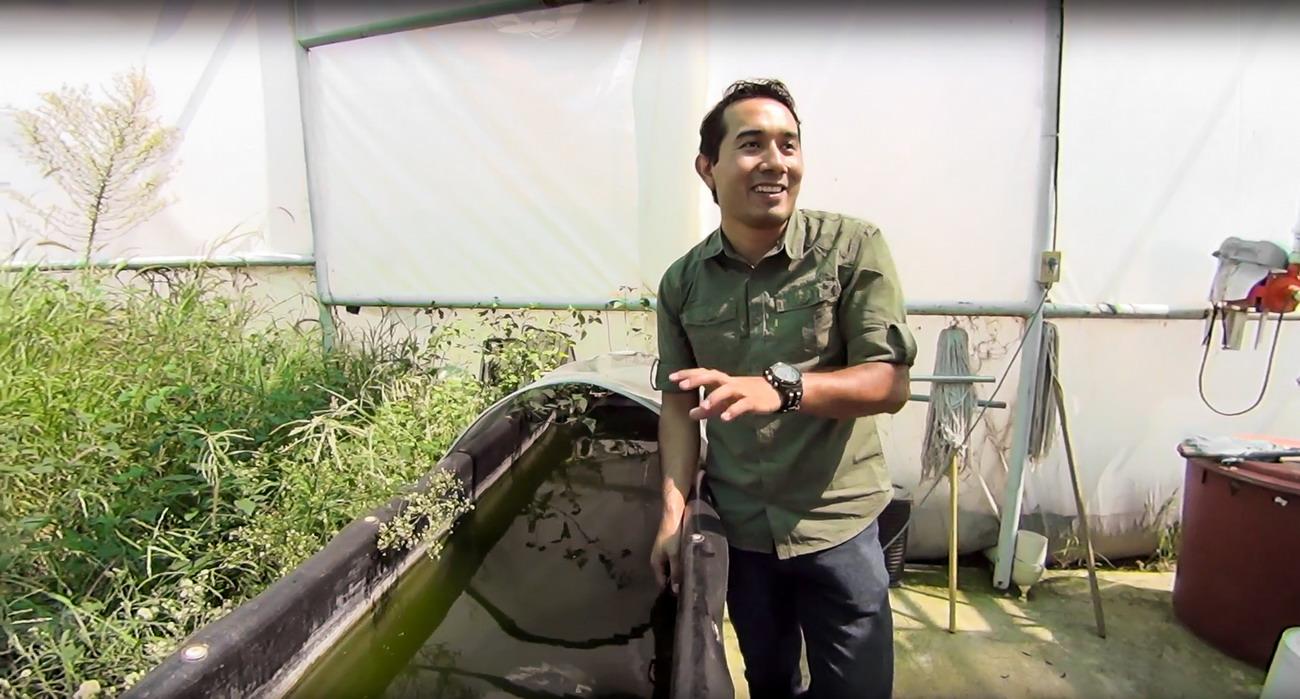 UAA propone soluciones para maximizar el cultivo de camarón por medio de la tecnología llamada Bio-Floc