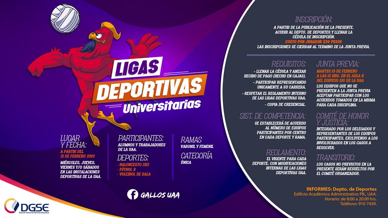 Ligas Deportivas Universitarias