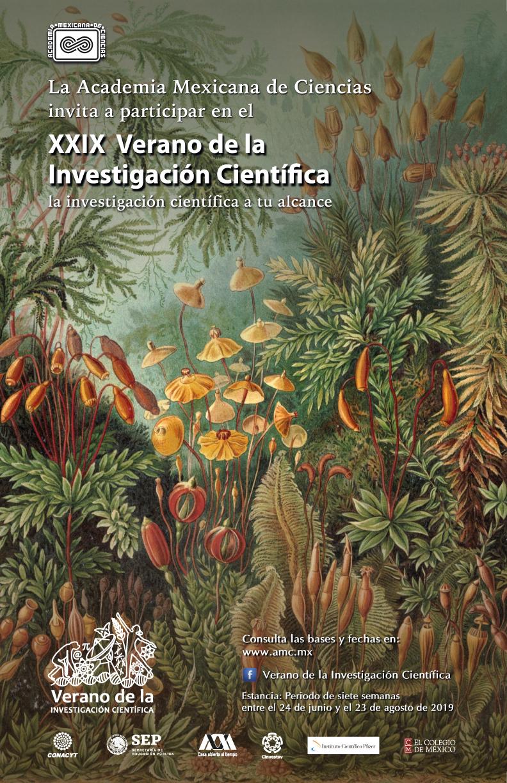 XXIX Verano de la Investigación Científica