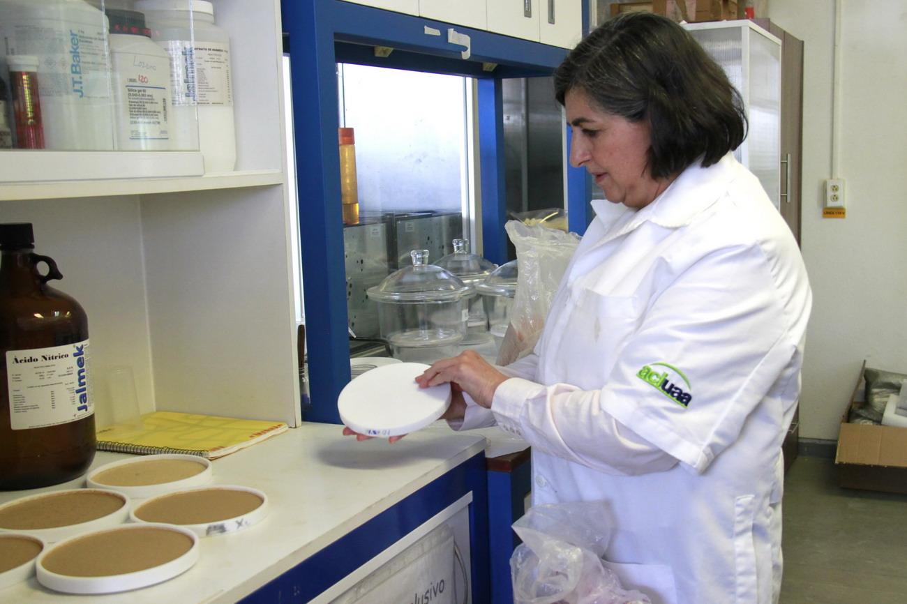 Investigadora de la UAA analiza los diferentes usos del nopal para la elaboración de utensilios