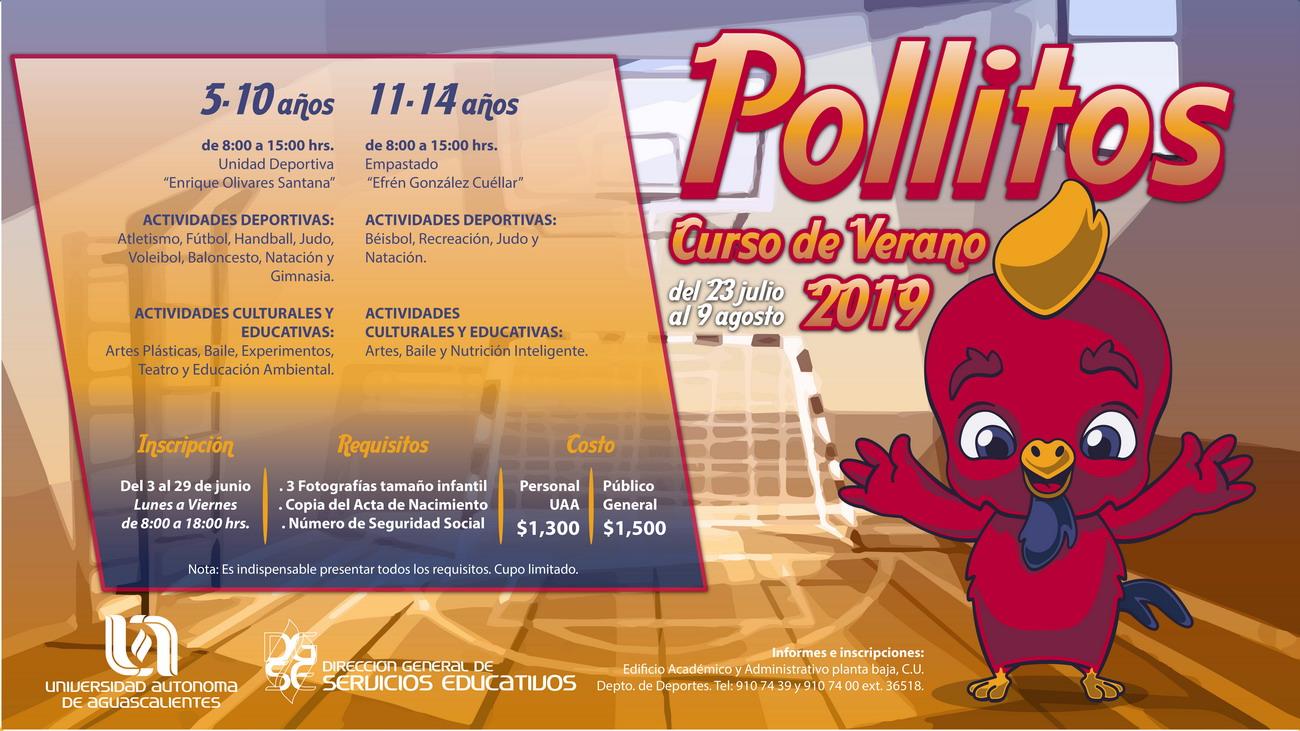 Pollitos – Curso de Verano 2019