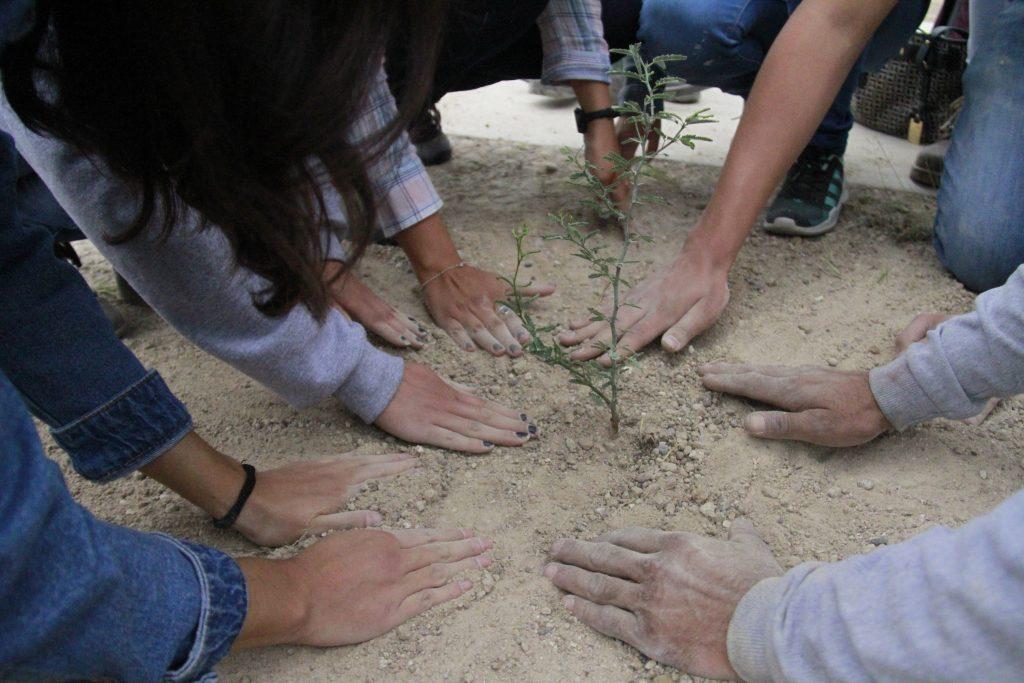 Superan expectativas acciones en pro del medio ambiente promovidas por la UAA