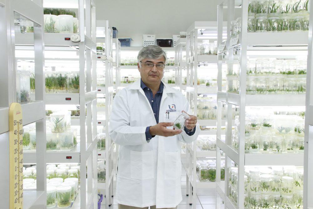 UAA realiza la conservación de plantas endémicas mediante clonaciones