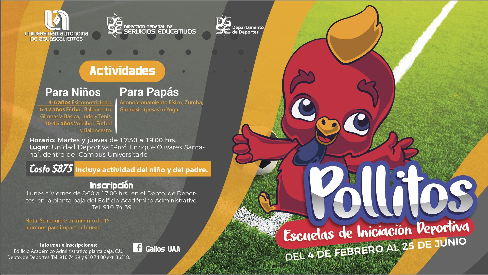 """Programa de Escuelas de Iniciación Deportiva """"POLLITOS"""""""