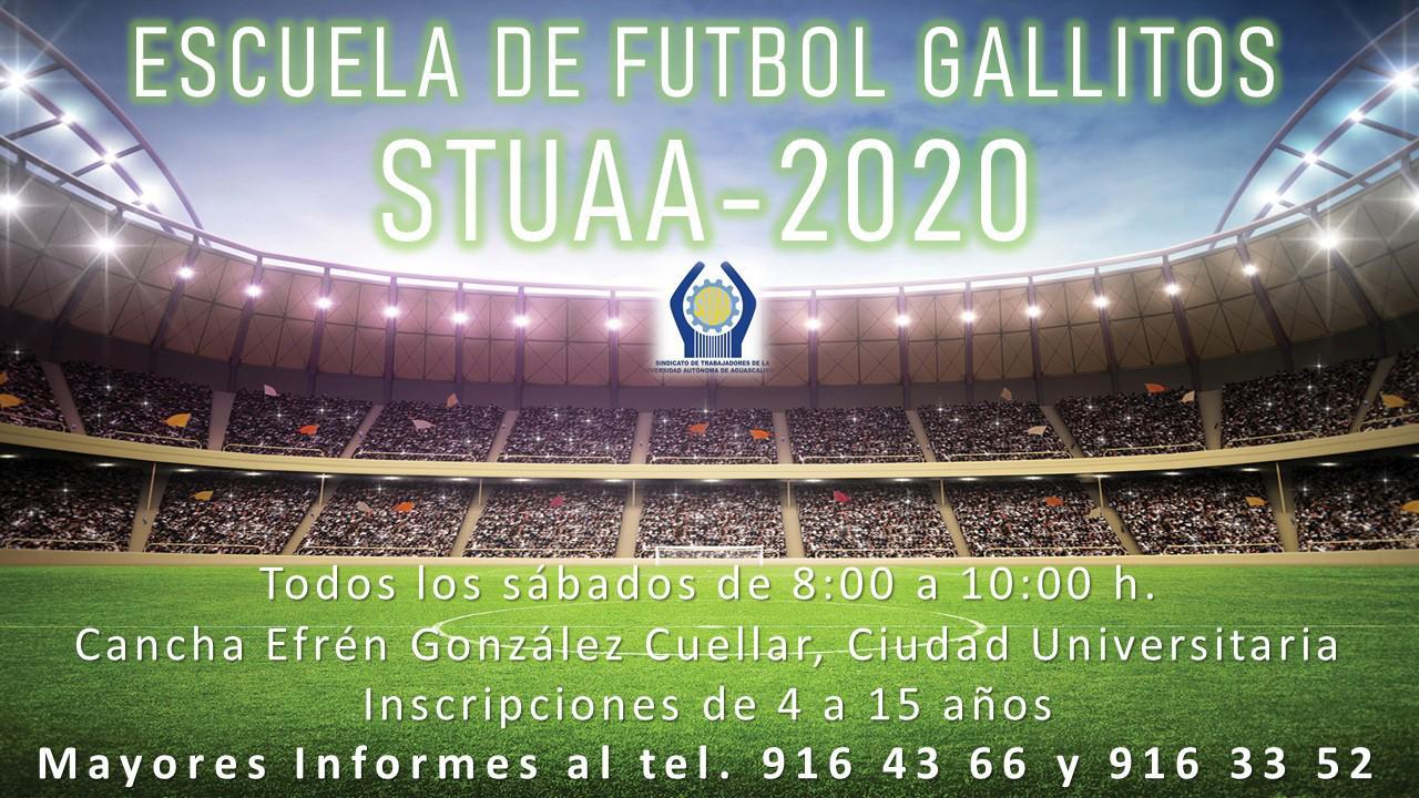 INVITACIÓN A LA ESCUELA DE FUTBOL GALLITOS STUAA