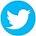 Logo-twiter-25