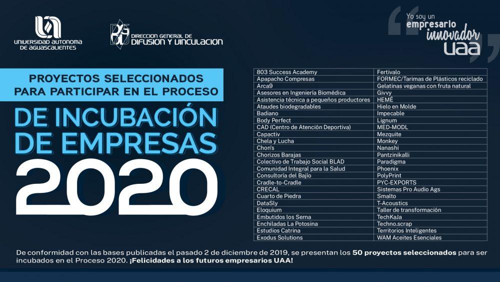 Proyectos Seleccionados – Proceso de Incubación de Empresas 2020