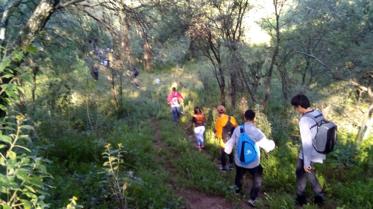 Conservación del Bosque de Cobos
