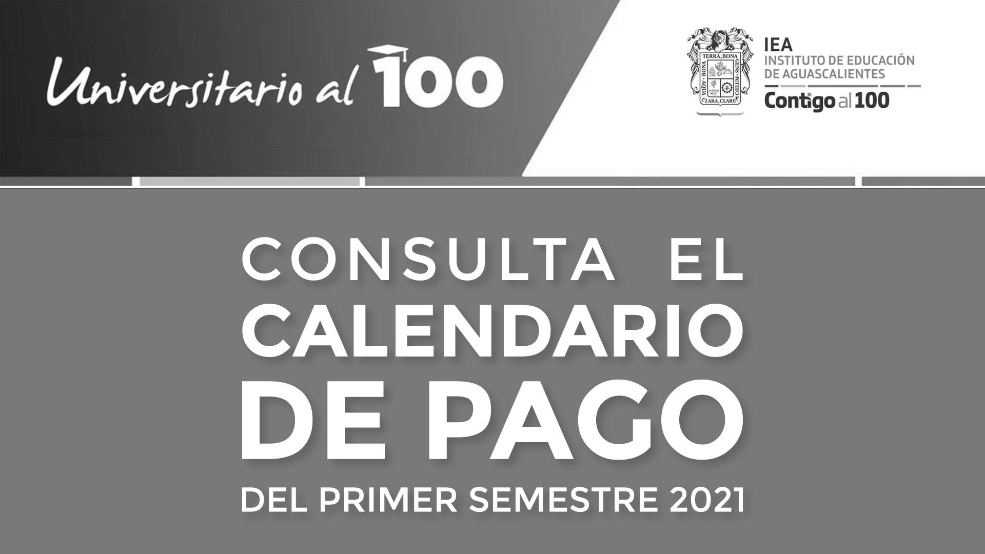 Universitarios al 100