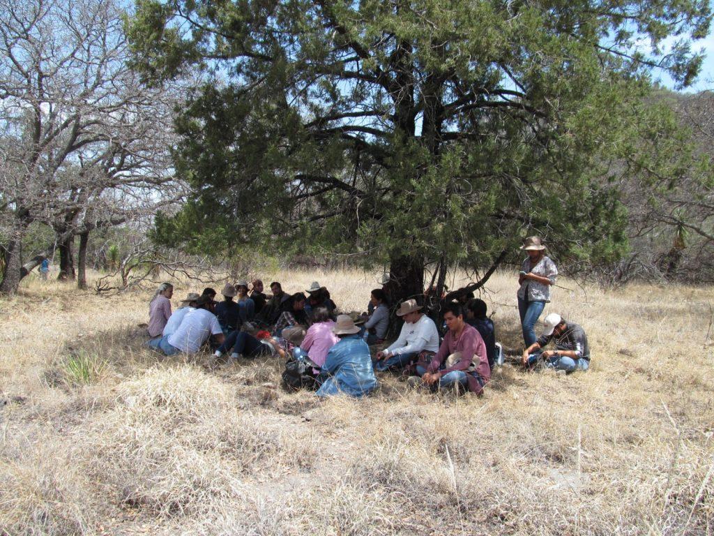 UAA desarrolla investigaciones para la protección ambiental en su Estación Biológica Agua Zarca