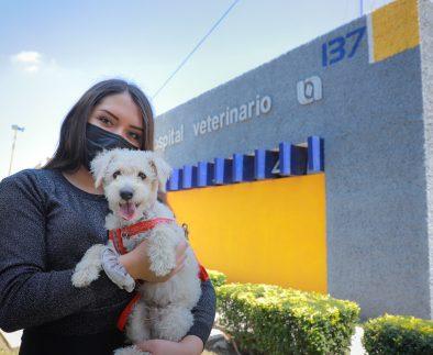 Hospital Veterinario de Pequeñas Especies de la UAA continúa fortaleciendo sus servicios