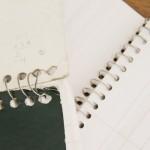 Realiza UAA Reciclaje de Cuadernos para Contribuir en la Protección del Medio Ambiente