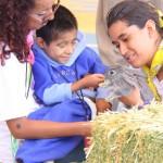 UAA Participa con Granja Didáctica Durante Verano del Club de Amigos Teletón, para Beneficio de la Población con Discapacidad