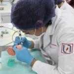 UAA Inica Proceso de Patente Odontológica.