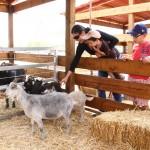 Pabellón Infantil Villa Verde de la UAA uno de los más visitados en la FNSM