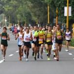 Cerca de mil participantes en la Carrera Atlética Gallos 2013