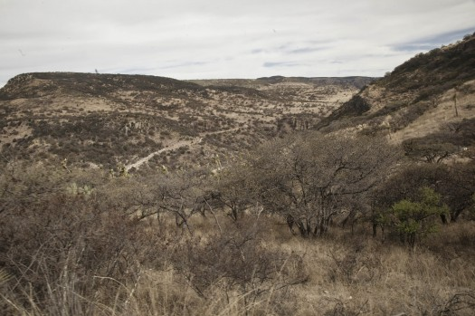 340 Conservacion Ambiente Desertico
