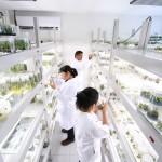 UAA divulgará ciencia que se desarrolla en instituciones acalitenses