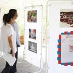 Estudiantes y futuros docentes de francés de la UAA refuerzan conocimientos