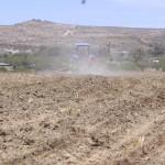 UAA investiga patógeno en cultivo de haba, proyecto financiado por una empresa