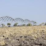 UAA investiga la susceptibilidad de los insecticidas en plagas de cultivos