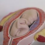 UAA y Hospital de la Mujer buscan generar prueba e identificar mutaciones genéticas relacionadas a pérdidas de embriones y fetos