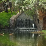 UAA investigará innovación ambiental de empresas manufactureras en Aguascalientes