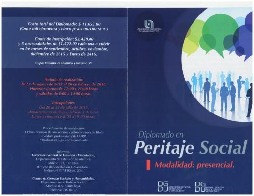 294 Diplomado Peritaje Social