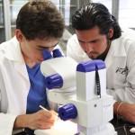 Nueve investigadores visitantes realizan estancias posdoctorales en la UAA