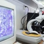 Necesarios más especialistas en parasitología pues Latinoamérica tiene un mayor número de este tipo de organismos