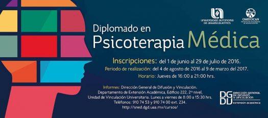 357 Diplomado Psicoterapia
