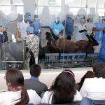 UAA una de las mejores opciones para el cuidado de la salud animal a través del Hospital Veterinario de Grandes Especies